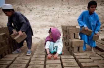نماینده سرمنشی سازمان ملل برای حمایت از کودکان افغان معرفی شد